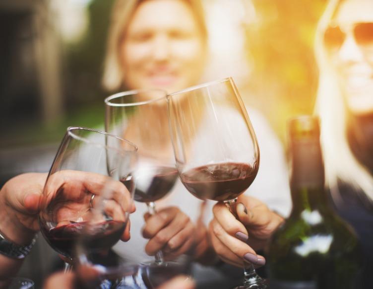 private wine pub crawl in verona