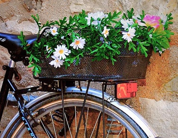 private verona bike tour